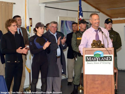 O'Malley makes Chesapeake Bay oyster announcement